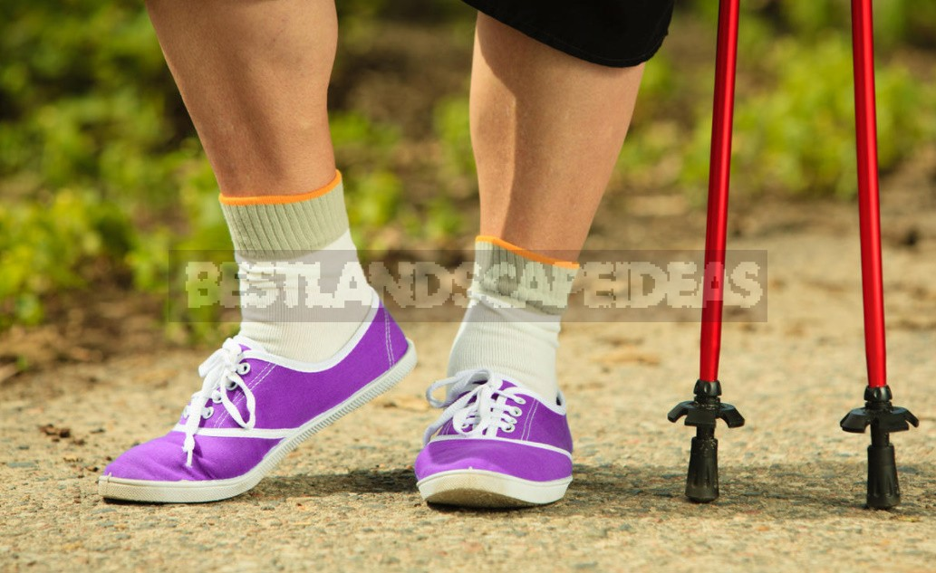 Nordic Walking Rules: How To Walk With The Use Of