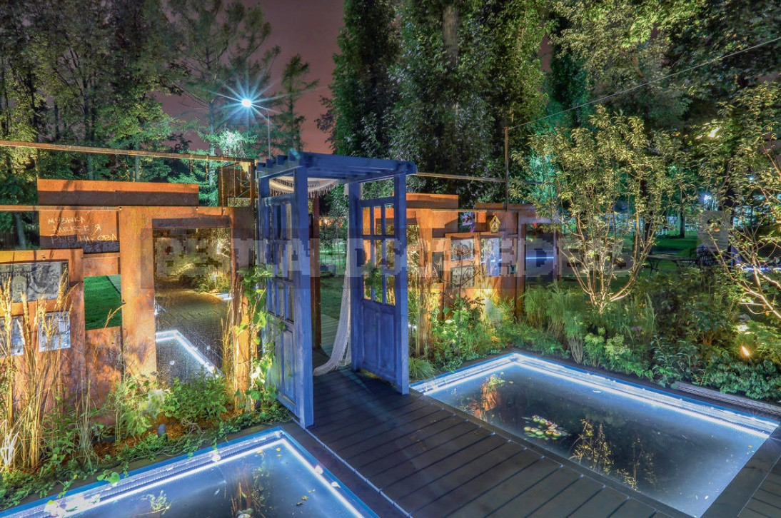 How To Take Photos In The Dark? All The Secrets Of Night Garden Photography