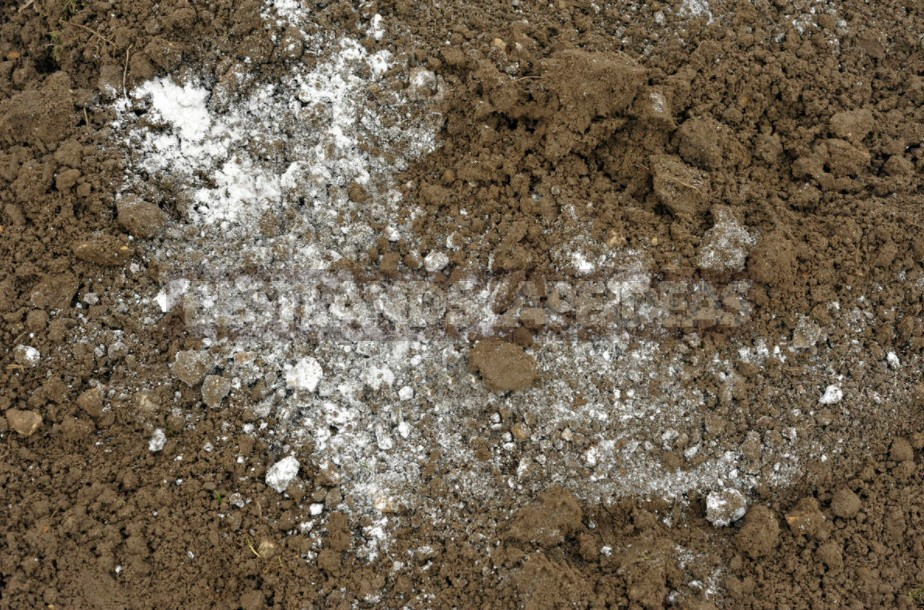 Soil Acidity: Determination And Reduction (Part 2)