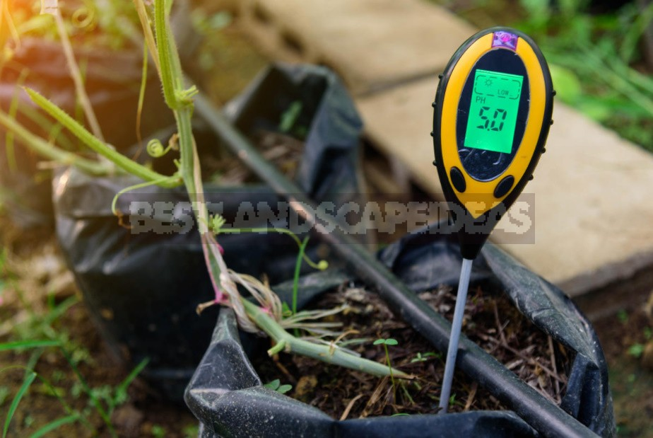 Soil Acidity: Determination And Reduction (Part 1)
