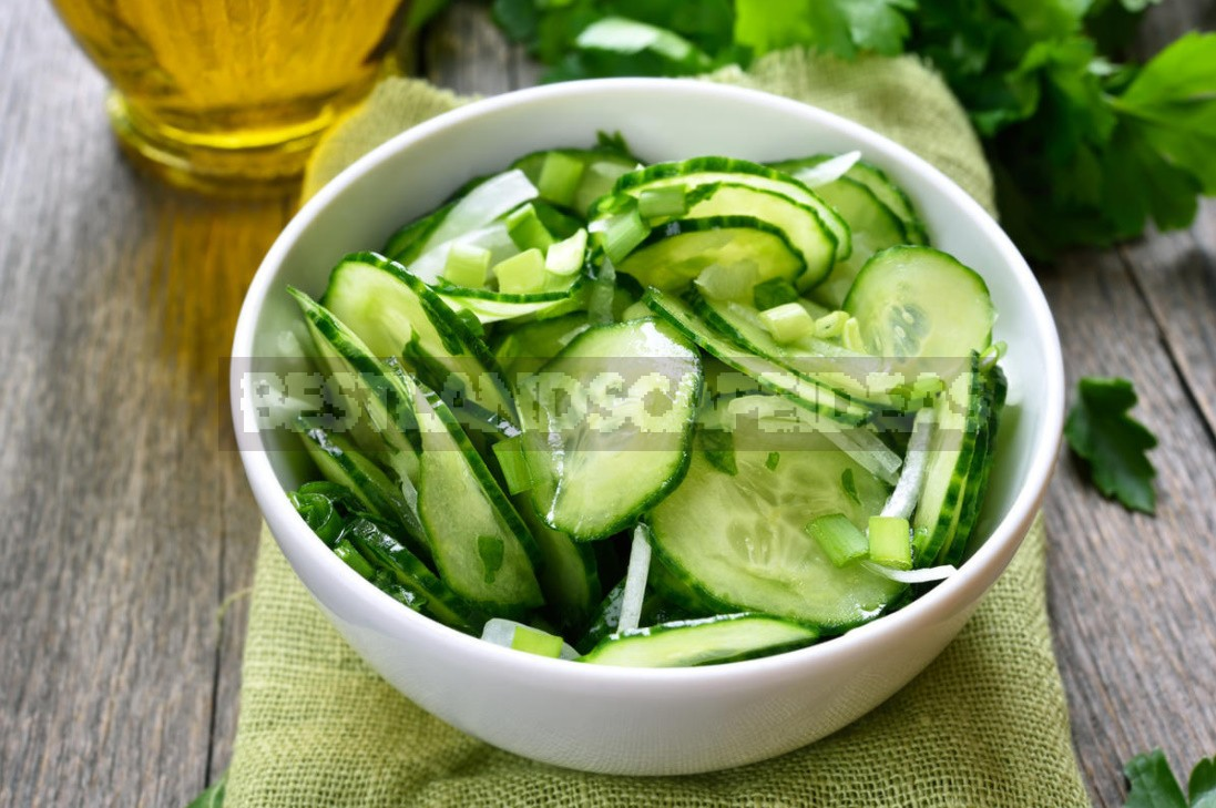 Useful Properties Of Cucumbers And Recommendations For Their Cultivation