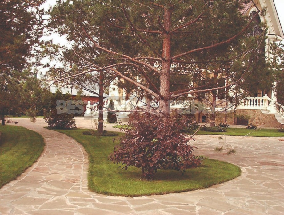 Three Types Of Garden Paths On Your Property