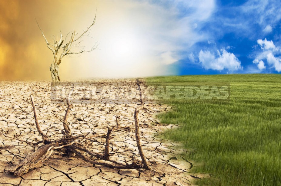 Global Climate Change: What Awaits Us And Who Is To Blame For This (Part 1)