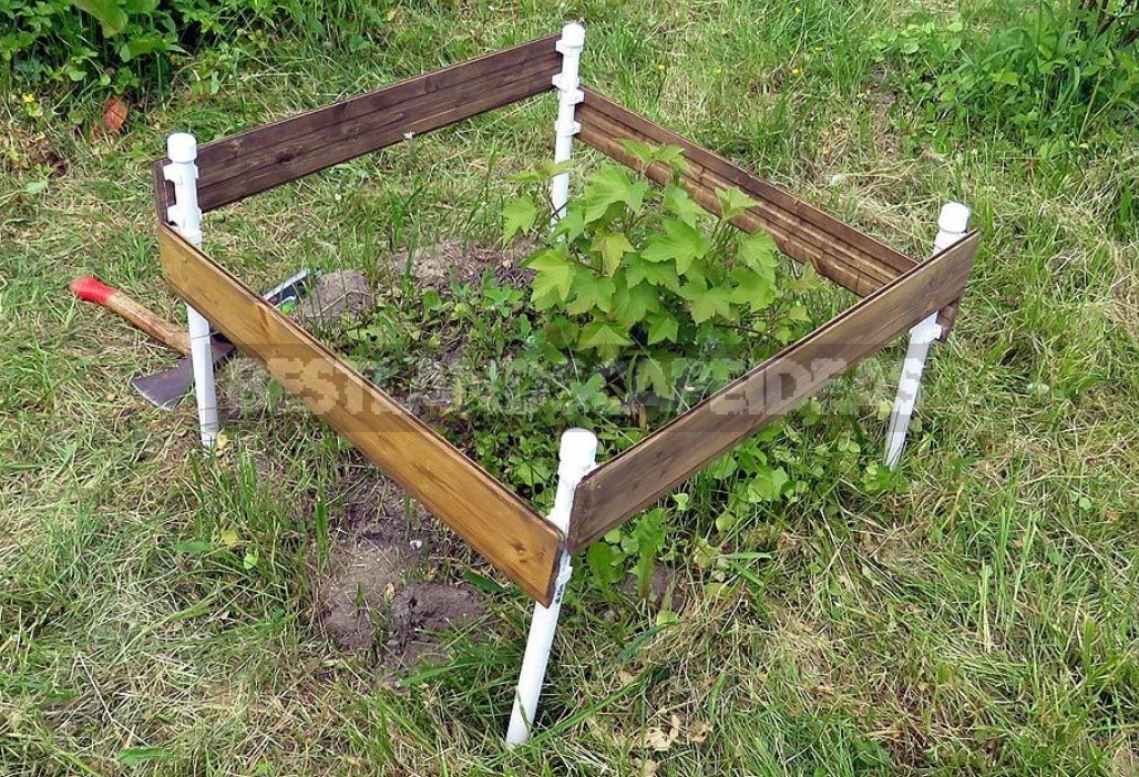Fence For Bushes From The Remains Of Plastic Pipes